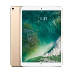iPad Pro Wi-Fi, gold, 64GB 10.5 inch