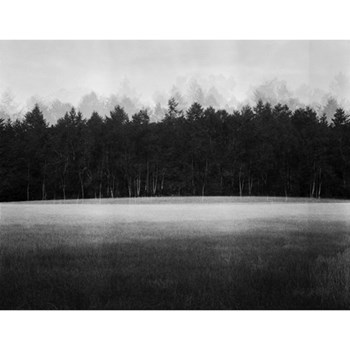 At Lawn by Jonty Sale Photographic print, 59.4 x 46.2cm