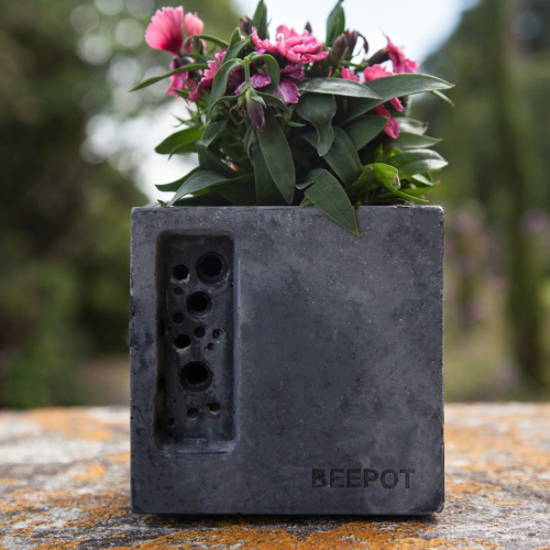 Mini Beepot Concrete planter and bee house, Charcoal