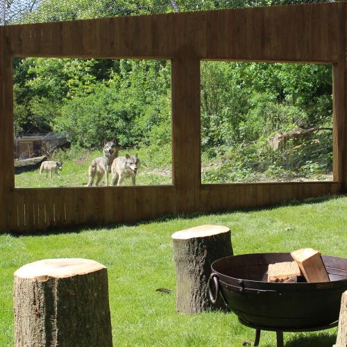 2 nights in Rhino/Wolf Lodge and Port Lympne Hotel, weekend-high season