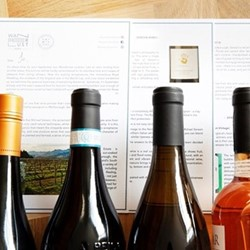 12 months gold wine club and discovery box
