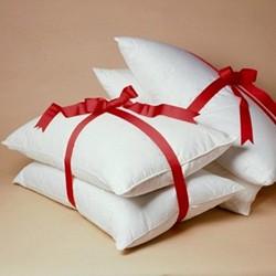 Down Around Pillow pair, regular, regular, duck down