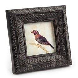 Photograph frame with ornithological print 3 x 3""