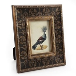 Photograph frame with ornithological print 5 x 7""