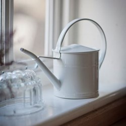 Watering can - 1.5L H21 x W30.5 x D14cm