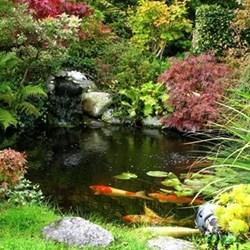 Garden pond fund
