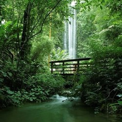 Waterfall walk for two