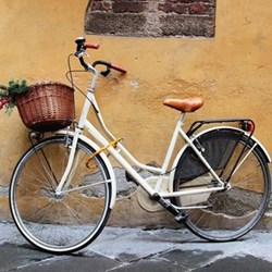 New bicycle fund