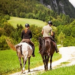 Horse riding lessons fund
