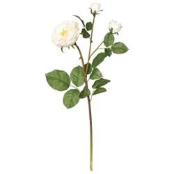 Faux english double rose stem 61cm