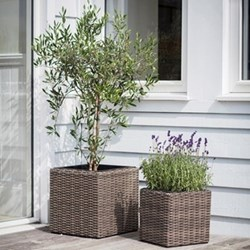 Set of 3 rectangular planters small, medium & large