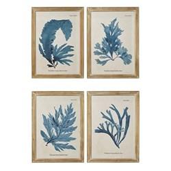Set of 4 framed prints 61 x 83cm