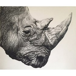 Example Artwork Northern White Rhino by Violet Astor, 54.2 x 49.5cm