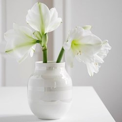 Omaggio Vase, H20 x W16.5cm, pearl