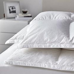 Pillow 65 x 65cm