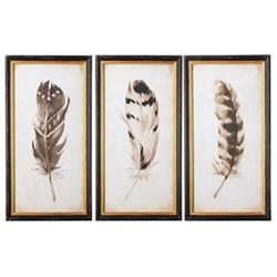 Pluma Set of 3 framed prints, W42 x H80cm, black/white