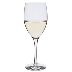 Wine Master Pair of white wine glasses, H21.5cm - 35cl, clear