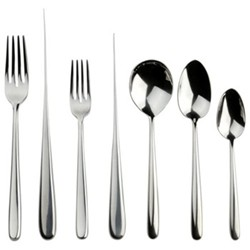 Echo 7 piece place setting, stainless steel