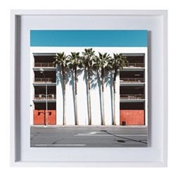 Las Vegas Palms by Kate Ballis Framed fine art photographic print, H57 x W57 x D3.3cm, white frame