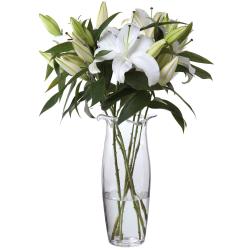 Florabundance Lily vase, H35cm, Clear
