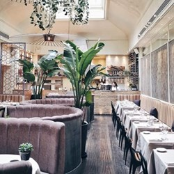 Four-course dinner with paired wines for two at critically-acclaimed Cigalon