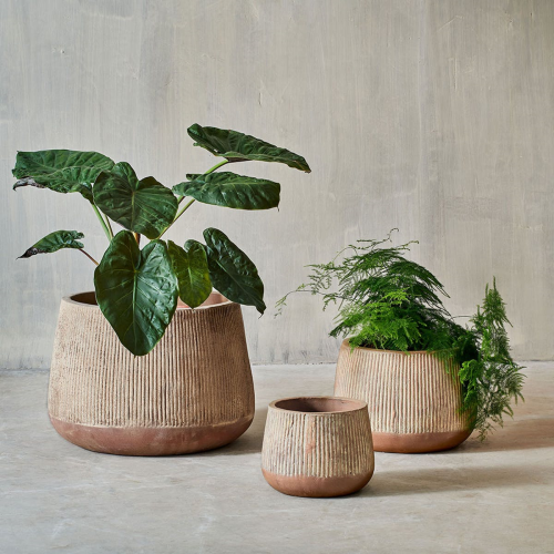 Wampu Wide Planter, Medium, Distressed Terracotta