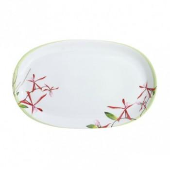 Exotica Oval platter, 38cm, rose et vert