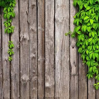 Garden fencing fund