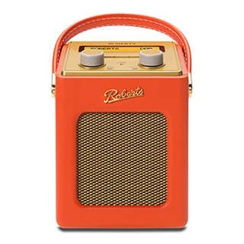 DAB/FM digital radio