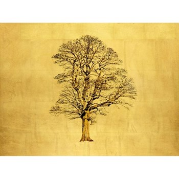Example Artwork Acer Pseudoplatanus (Large) by Robert Pereira Hind, 100 x 80 x 4cm