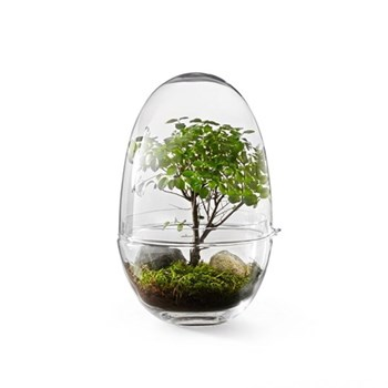 Grow Extra large greenhouse, D12 x H24cm, clear