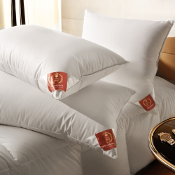 The Premier Pillow, 65 x 65cm, New White Hungarian Goose Down