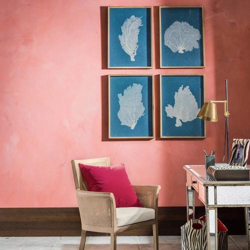 Skeleton Coral Set of 4 framed prints, W50 x H70cm, Blue/White