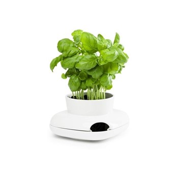 Outdoor Dining Small herb pot, 13 x 13 x 8.6cm