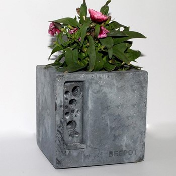 Mini Beepot Concrete planter and bee house, 10.5 x 10.5 x 10.5cm, charcoal