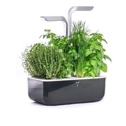 Smart Indoor garden, 38 x 33 x 19cm, soft black