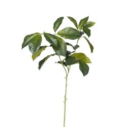 Faux laurel leaves stem, Green