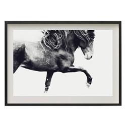 Sindri by Astrid Harrisson Framed fine art photographic print, H43 x W57 x D3.3cm, black frame