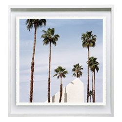 Palm Springs by Sinziana Velicescu Framed fine art photographic print with deckled edge, H57 x W57 x D3.3cm, white frame