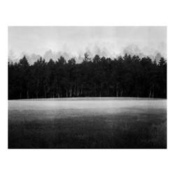 At Lawn by Jonty Sale Fine art photographic print, H28 x W42cm