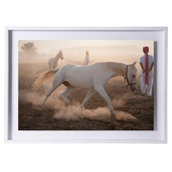 Circling at Dawn by Astrid Harrisson Framed fine art photographic print with deckled edge, H43 x W57 x D3.3cm, white frame