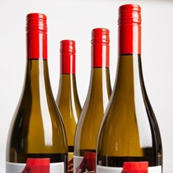 Case of New Zealand Sauvignon Blanc 6 bottles
