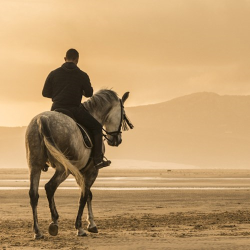 Luxury villa retreat and sunset beach horse riding for two in Andalusia