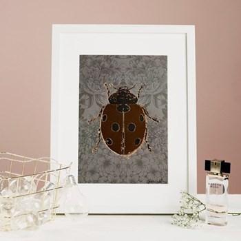 Ladybird Mounted print, 32.5 x 43cm, white frame