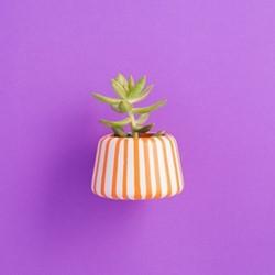 Drippy Small planter, L7.5 x W9 x H6cm, grey/orange