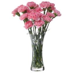 Florabundance Carnation vase, H26cm, Clear