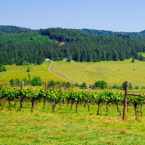 Two night wine getaway for two in Oregon