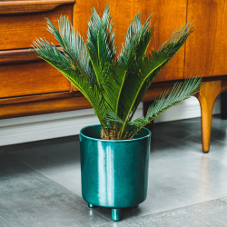 Pisa Planter, H20 x W24 x D24cm, Emerald
