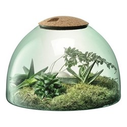 Canopy Closed garden terrarium, H22 x W31cm, recycled glass and cork