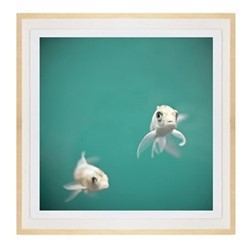 Dream Fish by Lisa Cervone Framed fine art photographic print with deckled edge, H45 x W45 x D3.3cm, ash frame